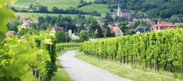 <span><span><span>Hôtel Athena Restaurant & Spa proche de la Route des Vins d'Alsace</span></span></span>